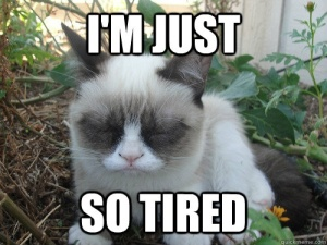 I'm just so tired.